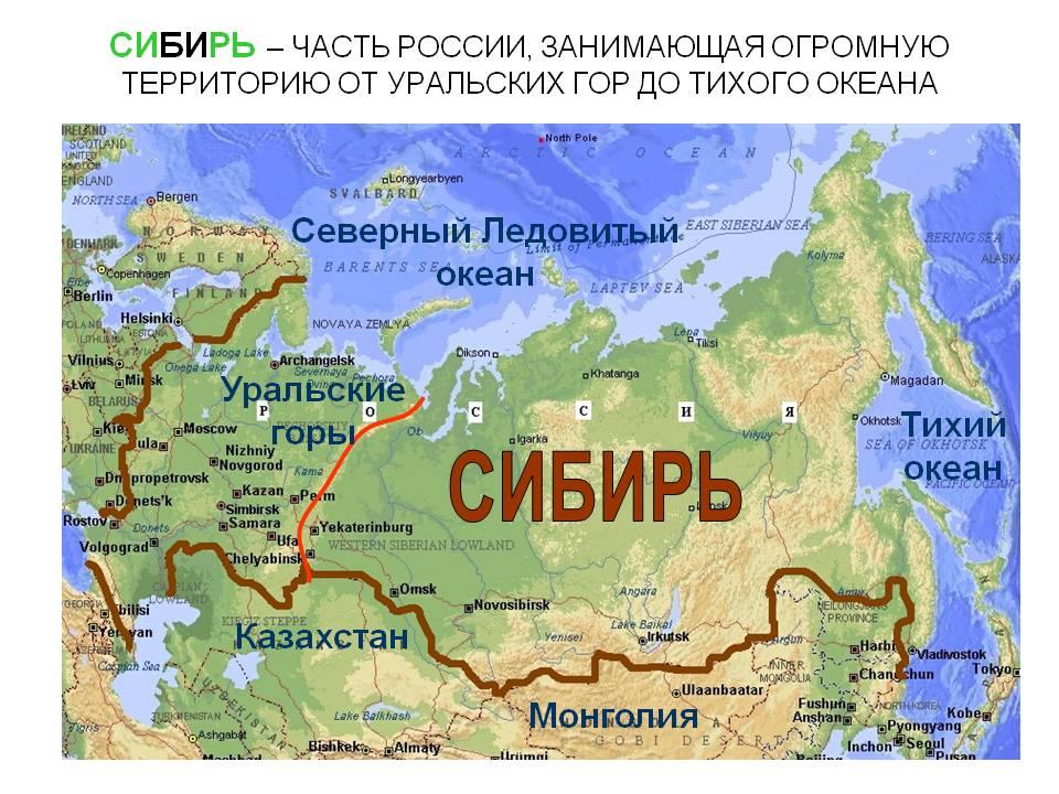 Сибирь. Сибирь - часть россии, занимающая огромную территорию от уральских гор до тихого океана. Северный ледовитый океан. Ураль