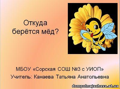 презентация пчелы и мед