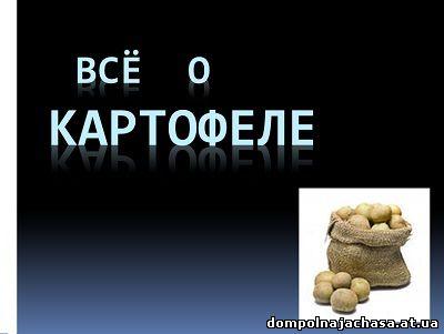 презентация картофель