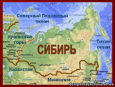 презентация животные Сибири
