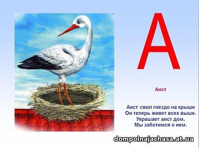 презентация Азбука зверей и птиц
