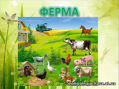 презентация Ферма