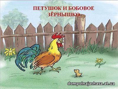презентация Бобовое зернышко