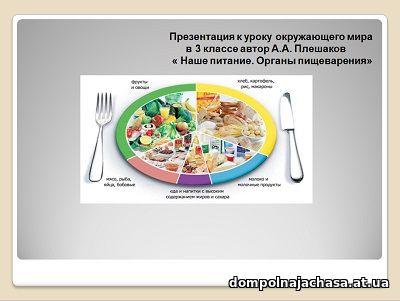 презентация питание