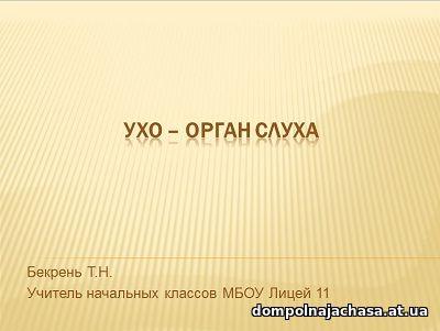 презентация Ухо-орган слуха