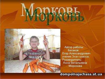 презентация Морковь
